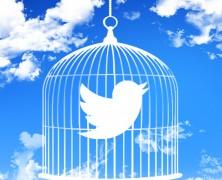 """O novo botão """"Mute"""" do Twitter"""