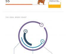 Infográfico: A dimensão ideal dos posts nas redes sociais